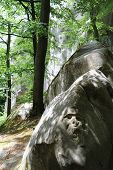 pic of rocking  - Stone boulder carved with anthropomorphic image - JPG