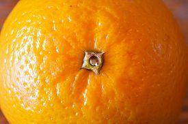 foto of valencia-orange  - Extreme closeup of Valencia orange against a brown background - JPG