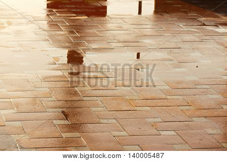 Puddle of water in rainy day