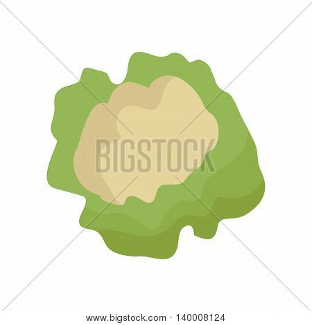 Cauliflower vector in flat style design. Vegetable illustration for conceptual banners, icons, app pictogram, infographic, and logotype elements. Isolated on white background.