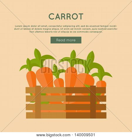 Carrot vector web banner. Flat design. Illustration of wooden box full of fresh and ripe carrot on color background for grocery shop, farm, agricultural company web page design.