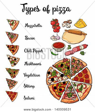 Set of various types of pizza and pizza ingredients, sketch style illustration isolated on white background. Basic ingredients and slices of freshly baked mozzarella mushroom vegetarian pizza