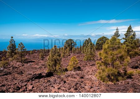 petrified lava flows of Teide volcano Roques de Garcia, Teide National park, Tenerife, Canary islands, Spain