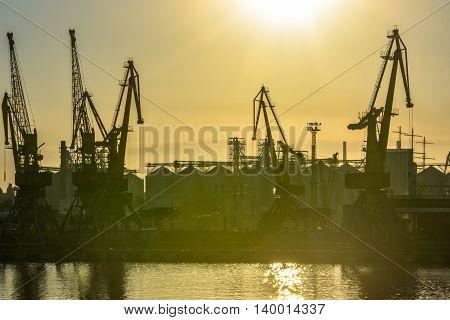 Sunset at the seaport. Marine ship cranes at night