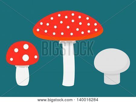 Flat set of different mushrooms. Vector illustration.