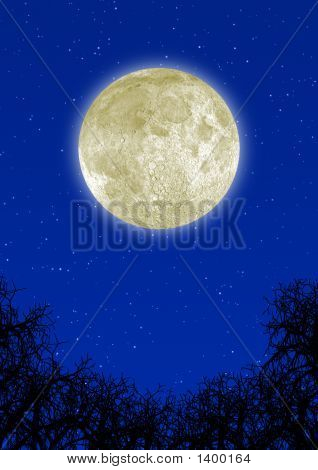 Highly Detailed Moon