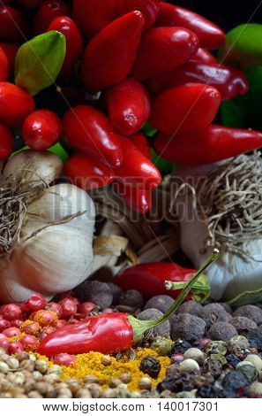 colorful spices and vegetables close up