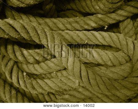 Sepia Thick Ropes
