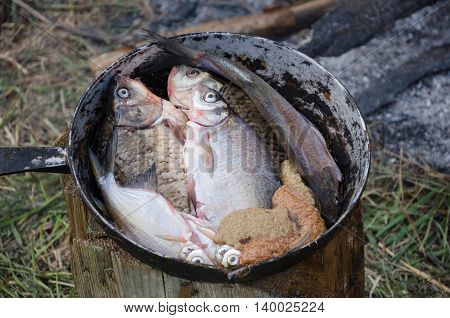 Cooking fish in field conditions. Fresh river fish and caviar lies on an old aluminum pan.