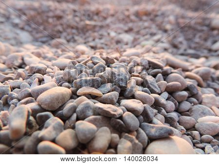 Pebble beach, background or texture of stones or pebbles on a beach.