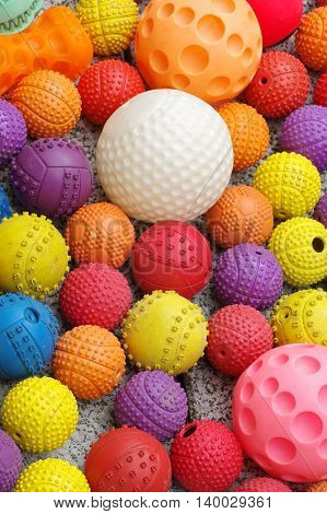 Ball toys for dogs objects group background pets theme