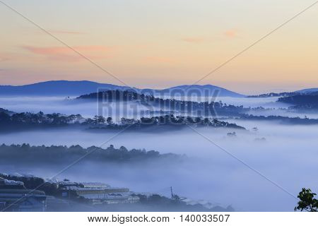 Fantastic foggy forest and mountain with pine tree in the sunlight