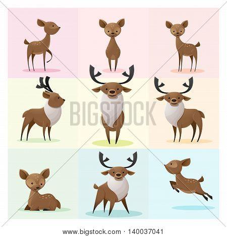 Set of Deer family , vector , illustration