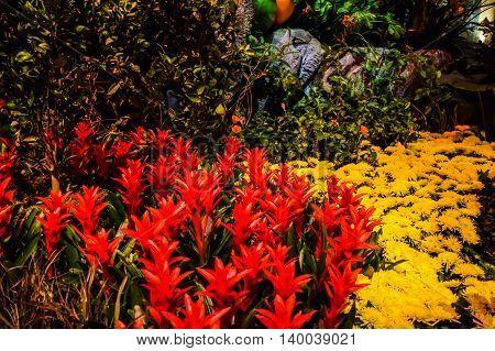 Bellagio Hotel Botanical Garden