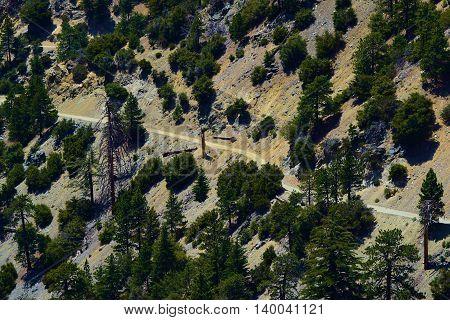 Hiking Trail taken at a rural mountain ridge taken in Mt Baldy, CA