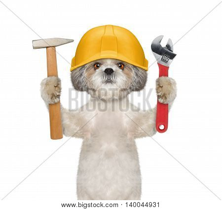 Cute dog builder holding tools in its paws -- isolated on white