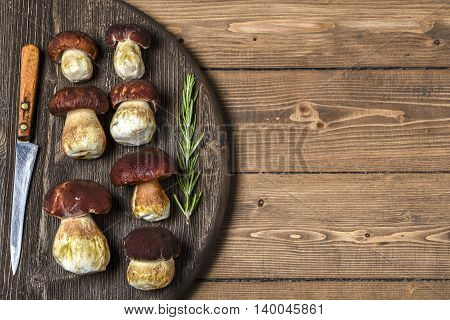 Porcini mushrooms on a wooden Board, place for text