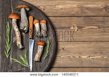 Mushrooms on a wooden Board, place for text