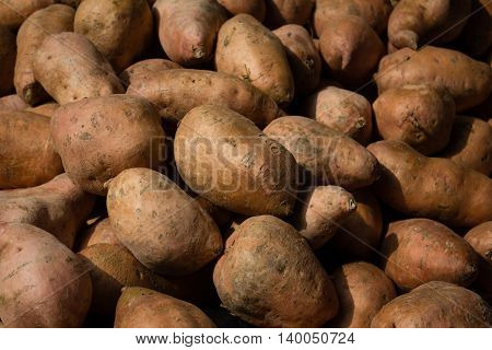 Sweet Potato -  Raw Sweet Potatoes Background -