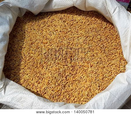 unhulled brown rice in a white sack, market in Songkhla, Thailand