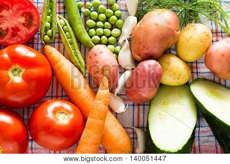 Healty Colorfull Kitchen