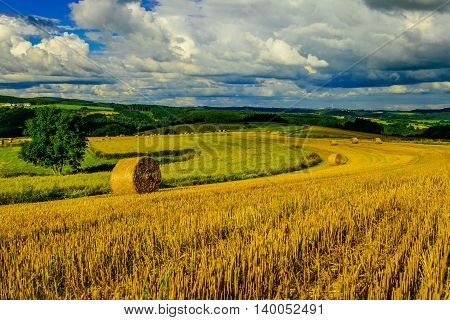 Landscape with hay rolls near Vianden, Luxembourg