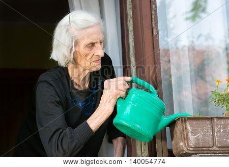Senior Woman Watering Flower On House Window