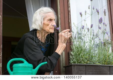 Senior Woman Alone On House Window