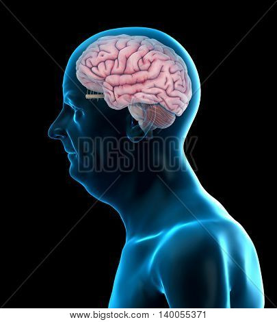 3d rendered medically accurate illustration of an old mans brain