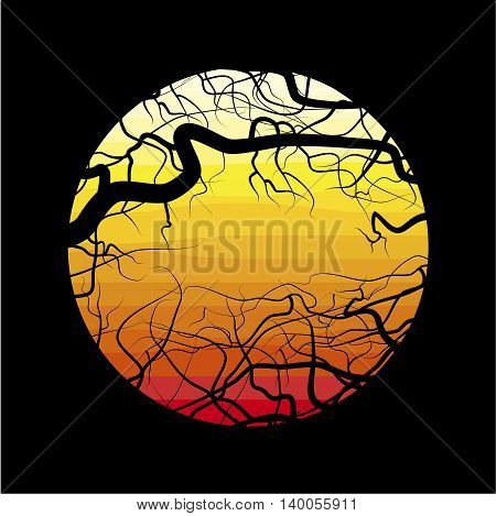 The branches of the dead tree on the background of the desert at sunset.