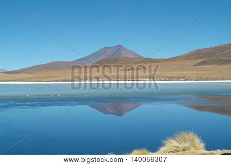 Landscape of a lake and a very large mountain
