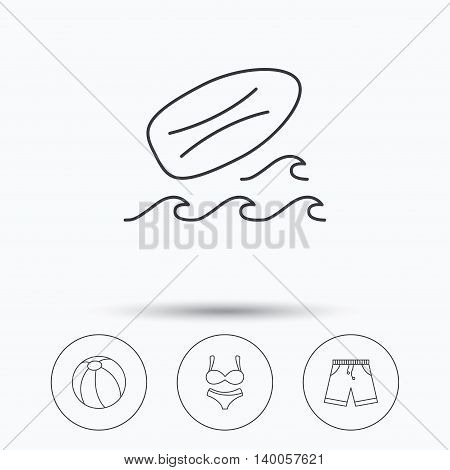 Surfboard, beach ball and trunks icons. Shorts linear sign. Linear icons in circle buttons. Flat web symbols. Vector