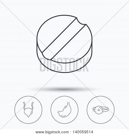 Medical mirror, tablet and stomach organ icons. Urinary bladder linear sign. Linear icons in circle buttons. Flat web symbols. Vector