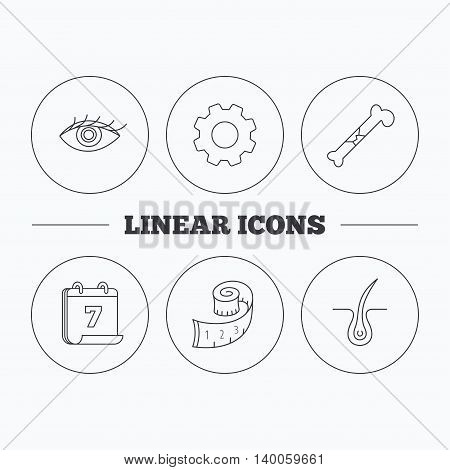 Bone fracture, weight loss and trichology icons. Eye linear sign. Flat cogwheel and calendar symbols. Linear icons in circle buttons. Vector
