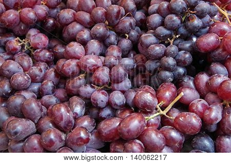 Bunches of reddish purple grapes on display