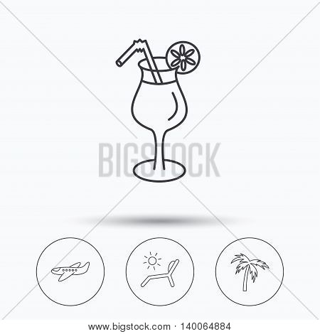 Airplane, deck chair and cocktail icons. Palm tree linear sign. Linear icons in circle buttons. Flat web symbols. Vector