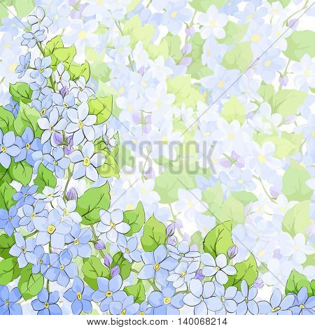 forget me not background