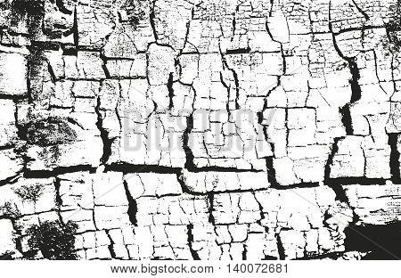 Distressed overlay wooden texture grunge vector background.