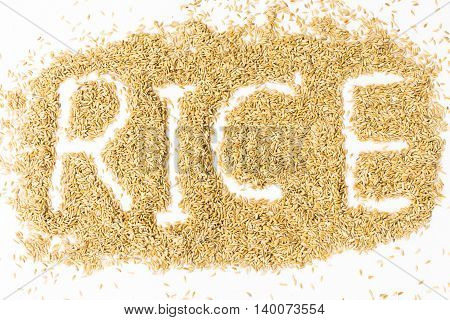 Paddy with rice alphabet  isolated on white background.Raw food or Rice has not yet been processed.