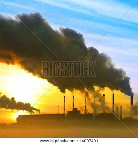 Planta com fumaça