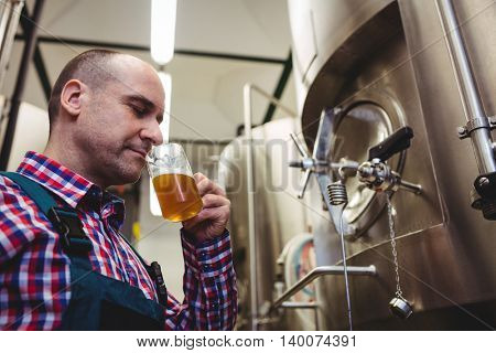 Low angle view of manufacturer smelling beer in mug at brewery
