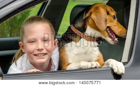 Happy Smilling Girl And Beagle Puppy In A Car