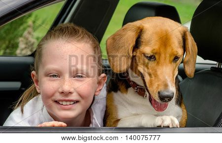 Happy Girl And Beagle In A Car