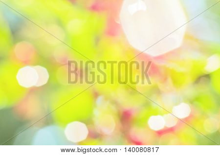 Multicolored blurred abstract background of the orchard with green leaves red berries and sun glare