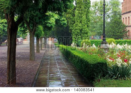 Rainy weather. Landscape with summer city park with variety of trees and flowers. Bright juicy colors. Stone-paved path in puddles