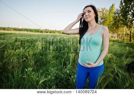 Beautiful Brunette Pregnant Woman At Wreath Field