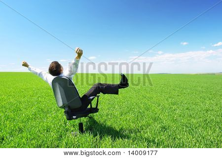 Happy businessman on chair in green field