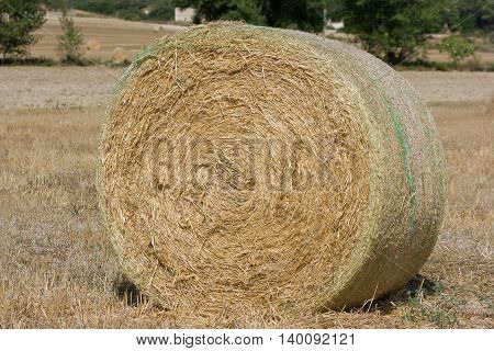 Rolls of haystack on the field. A sunny scenery with haystack in Spain. Agriculture concept. Summer rural landscape