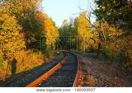 rails in the woods at sunset in the summer
