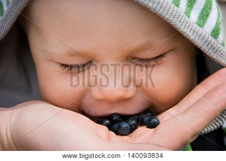 2 years old boy smiling and eating organic blueberries after picking them in the summer forest. Happy childhood and healthy lifestyle.